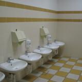 Pulizia igienico-sanitaria